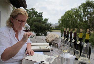 Mira Šemić: In vino veritas – zaupam vam vso resnico o vinu