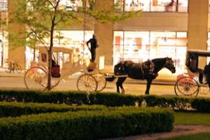 A15-kočija Luksuzna turistična kočija je vozila ponoči le po najbolj varovanem delu mesta. Piše Andrej Ivanuša za Navdihni.me by Insights d.o.o.