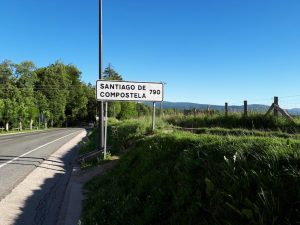 Irena Camino Navdihni.me by Insights d.o.o. 1 790 km