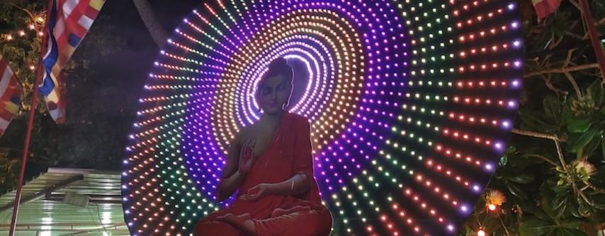 Buda danes – uravnoteženost v mislih, besedah in dejanjih
