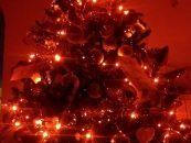 Božič in zahvalni dan za 21. stoletje
