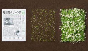 Kompostirani časopis za Navdihni me by Insights d.o.o.