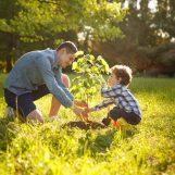 Ko zaživi otrok, posadimo drevo
